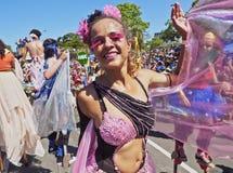Karneval in Rio de Janeiro Stockfotos