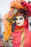 karnevaldräkt venice Royaltyfri Bild