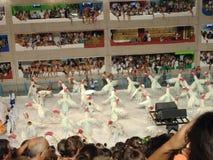 Karnevalem-Rio de Janeiro Royaltyfri Foto