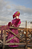Karnevalet maskerar i Venedig Fotografering för Bildbyråer