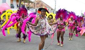 Karnevalfärger Arkivbilder
