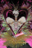 karnevalfebruari för 17 kandidat quee tenerife Royaltyfri Fotografi