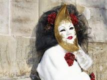 karnevalhalliavenezia Arkivbilder
