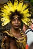 karnevalkull som notting Royaltyfri Foto