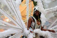 karnevalkull som notting Royaltyfri Fotografi