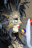 karnevalmaskering 2011 venice arkivfoton