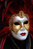 karnevalmaskering Arkivfoto
