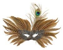Karnevalmaskering med påfågelfjädrar som isoleras på den vita backgren Royaltyfria Foton