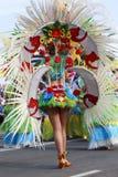 Karnevalsgruppen und kostümierte Charaktere, Parade durch die Straßen der Stadt von Santa Cruz de Tenerife lizenzfreies stockfoto