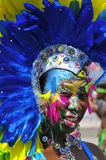 Karnevalskönhet Arkivfoto
