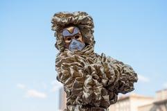 Karnevalskostüm lizenzfreies stockfoto