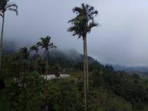 Karomba Pinrang imagen de archivo libre de regalías