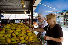 European tourists choose mangoes in the market. stock photography