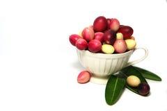 Karonda eller Carunda FruitsCarissa carandas L På vitbakgrund royaltyfria foton