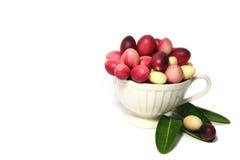 Karonda eller Carunda FruitsCarissa carandas L På vitbakgrund fotografering för bildbyråer