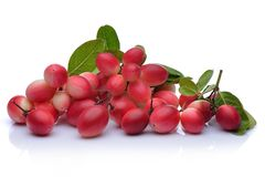 Karonda-Frucht Lizenzfreie Stockfotos