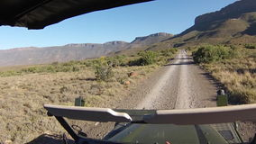 Karoo National Park. First person view game drive on off-road savannah of Karoo National Park with antelope crossing, Western Cape province of South Africa stock video footage