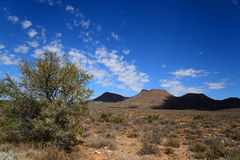 Karoo National Park in the Western Cape of South Africa Royalty Free Stock Photos