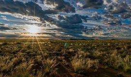 Karoo ranek w południowym Africa Zdjęcia Royalty Free