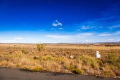 Karoo trawiasty teren Zdjęcie Stock