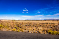 Karoo veld Stock Afbeeldingen