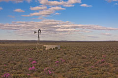 Karoo windpump Royalty Free Stock Image