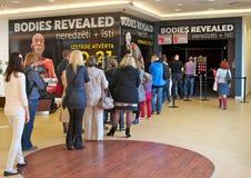 Karosserien deckten Ausstellung der menschlichen Leichen auf lizenzfreies stockfoto