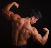 Karosserien-Erbauer, der zweiköpfigen Muskel biegt lizenzfreies stockfoto