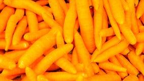 Karotte des biologischen Lebensmittels Eine Abbildung einer Batikauslegung in zwei Farbtönen Braun oder des Tan in einer Kreisaus Stockbilder
