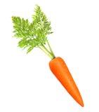 Karotte getrennt auf Weiß Stockbild