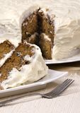 Karotte-Kuchen 007 Stockfotografie