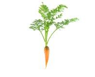 Karotte mit Blatt auf weißem Hintergrund Lizenzfreie Stockbilder