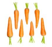 Karotten Stockfotos