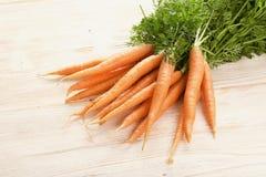 Karotten Lizenzfreie Stockfotos