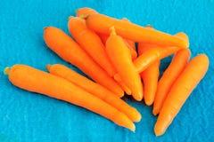 Karotten auf blauem Gewebe Stockbilder