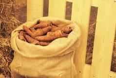 Karotten in einer Tasche Stockbild