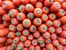 Karotten für Verkauf am Supermarkt stockfoto