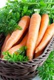 Karotten im Korb Stockbilder