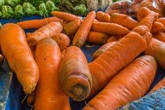 Karotten am Landwirt-Markt Lizenzfreies Stockfoto