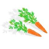 Karotten mit Blattvektorillustration Lizenzfreies Stockfoto
