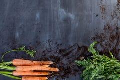 Karotten mit Boden Lizenzfreie Stockfotografie