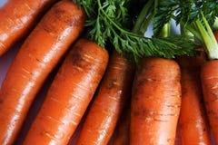 Karotten roh mit Oberseiten Stockbild