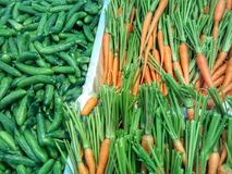 Karotten und Gurken leben Stockbild