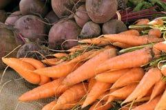 Karotten und Rote-Bete-Wurzeln Lizenzfreies Stockfoto