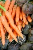 Karotten und Rote-Bete-Wurzeln Stockfotos