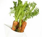 Karotten vom Garten Stockfotos