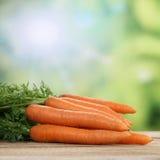 Karottengemüse im Sommer Lizenzfreies Stockfoto