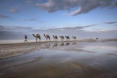 从Karoum紫胶的盐有蓬卡车在埃塞俄比亚 免版税库存图片