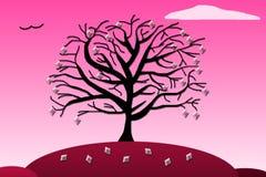Karowy drzewo Zdjęcia Royalty Free
