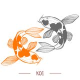 Karp Koi in Hand Drawn Style. Karp Koi. Fish in Hand Drawn Style for Surface Design Fliers Prints Cards Banners. Vector Illustration vector illustration